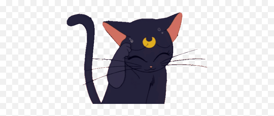 Top Crying Cat Stickers For Android Ios - Sailor Moon Transparent Gif Emoji,Crying Cat Emoji