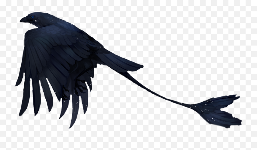 Bird Fantasy Scifi Raven Birds Black - Cool Black Birds Emoji