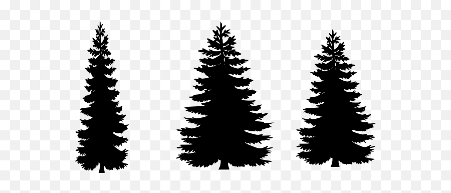 Free Pine Tree Clipart Png Download Free Clip Art Free Free Pine Tree Silhouette Emoji Pine Tree Emoji Free Transparent Emoji Emojipng Com