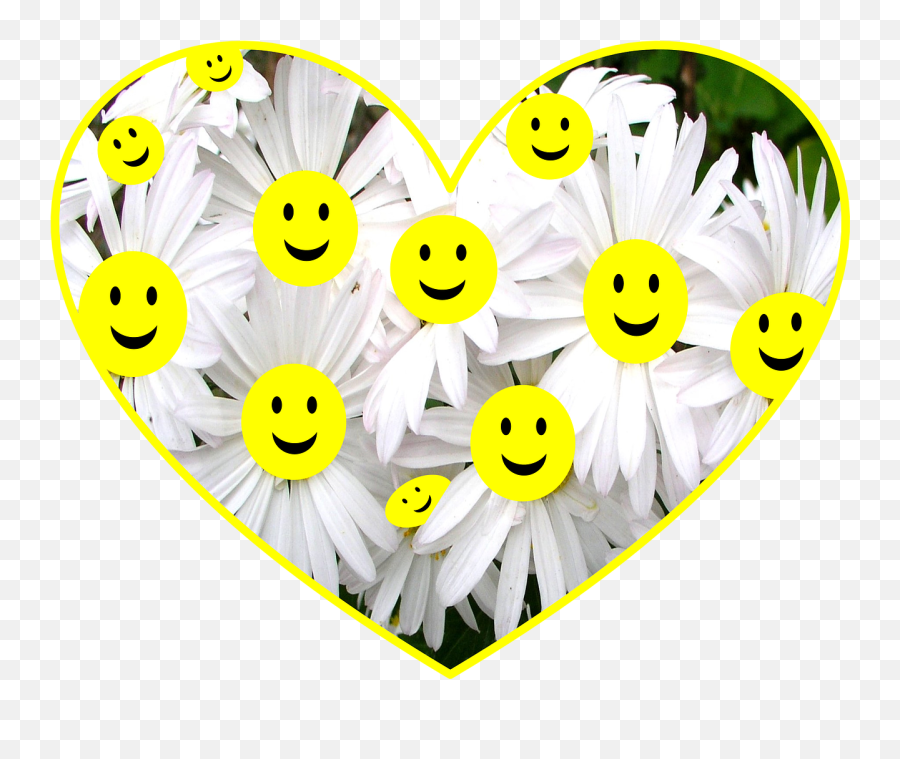 Happy Face Daisy Flowers Smiley - Happy For Being A Grandmother Emoji
