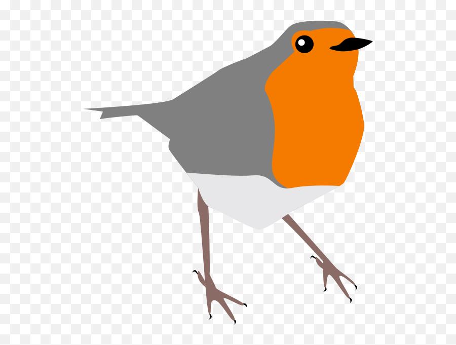 Robin Bird Grey And Orange - Bird Cartoon Robin Emoji