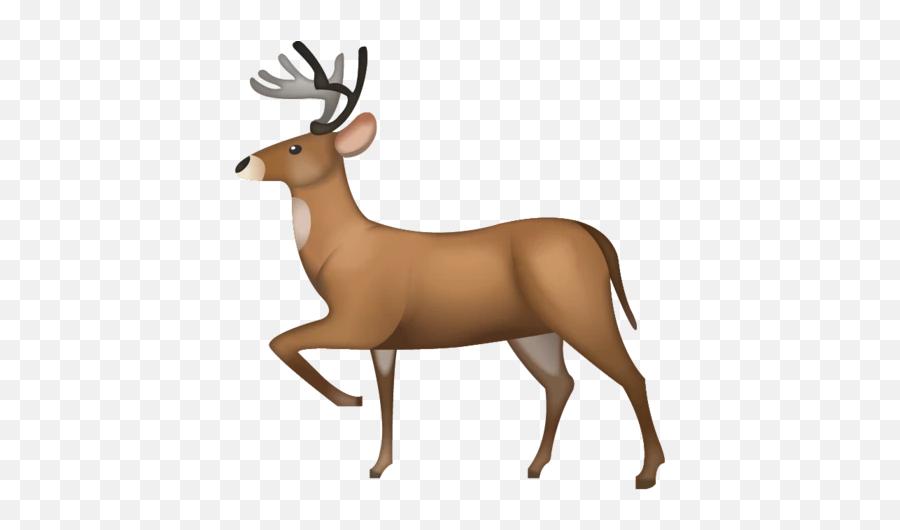 Deer Emoji Download Ios - Iphone Deer Emoji,Deer Emoji