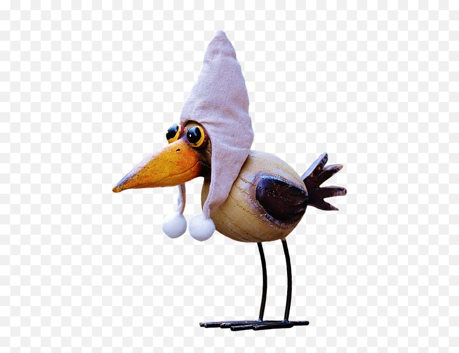 Raven Bird Cap - Cartoon Raven Bird Png Emoji