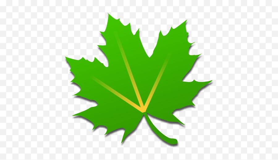 Broom Icon On Android At Getdrawings - Greenify App Emoji,Broom Emoji For Iphone