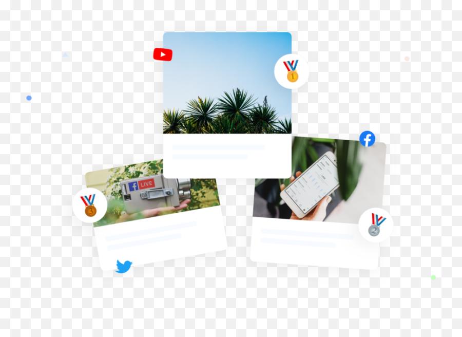 Tool For Social Media Management For Teams - Swatio Christmas Tree Emoji,100 Pics Christmas Emoji