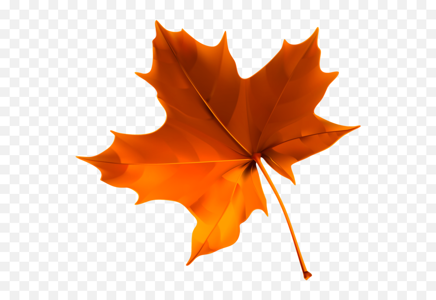 Fall Clipart Leaf Rake Fall Leaf Rake Transparent Free For - Transparent Background Fall Leaf Clipart Emoji,Autumn Leaf Emoji