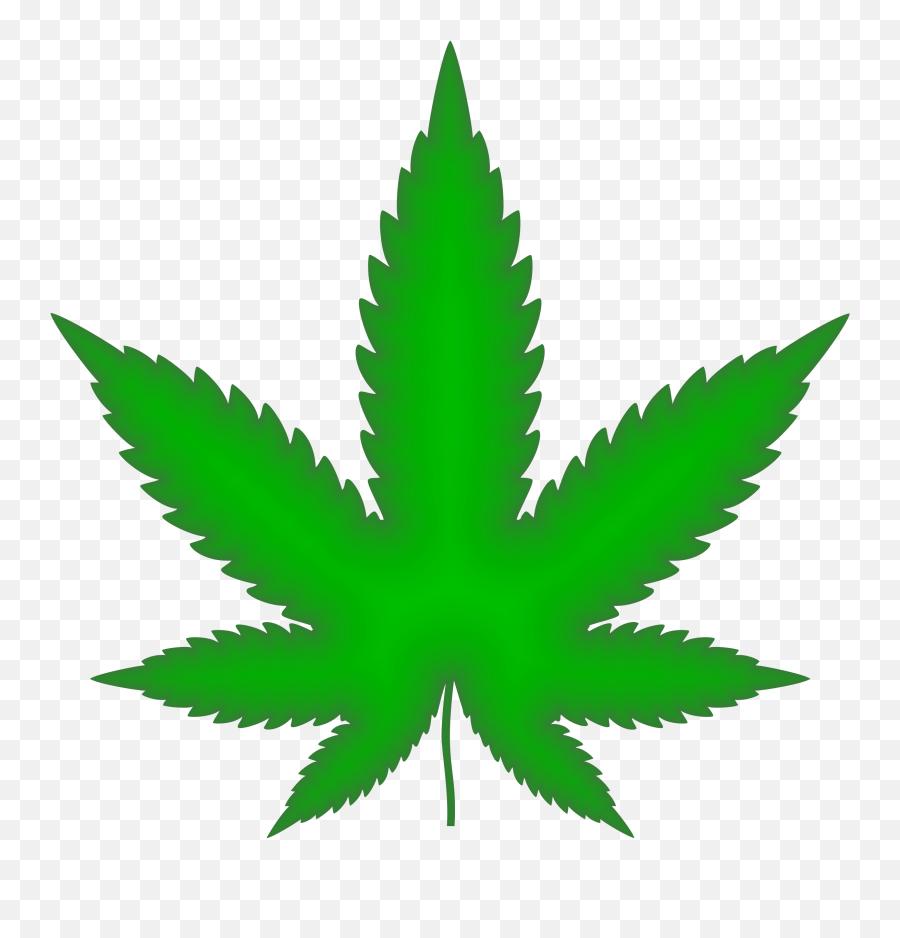 Marijuana Leaf Green Png Weed - Cannabis Png Emoji