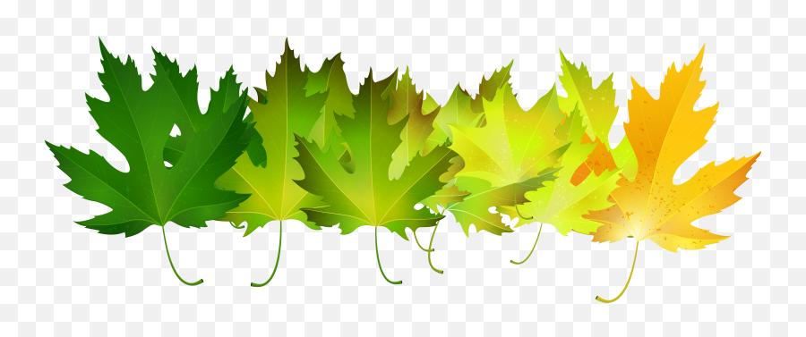 Clipart Leaves Green Clipart Leaves Green Transparent Free - Green Fall Leaves Clip Art Emoji,Autumn Leaf Emoji