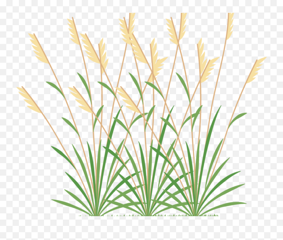 Icon 2 Weeds - Weed Grass Icon Png  Transparent Cartoon  Weeds Png Emoji