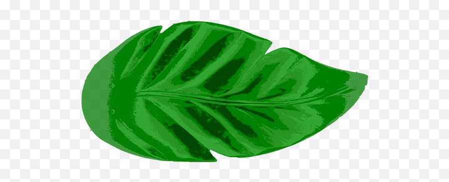 Green Tropical Leaf - Tropical Leaf Png Art Emoji