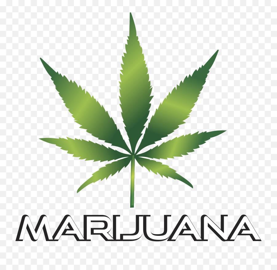 Weed Clipart Transparent - Weed Leaf Transparent Background Emoji