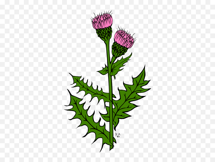 Library Of Weed Bud Vector Transparent Png Files - Thistle Leaf Clip Art Emoji