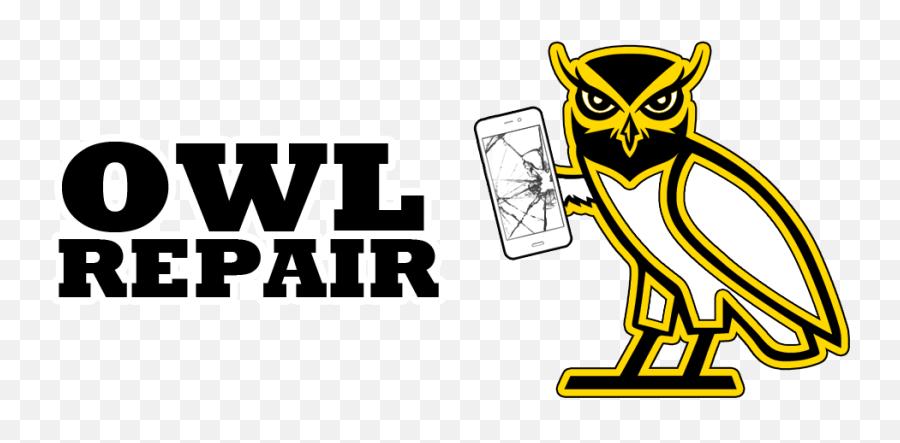 Download Hd Kennesaw Iphone Repair - Cartoon Emoji,Owl Emoji Iphone