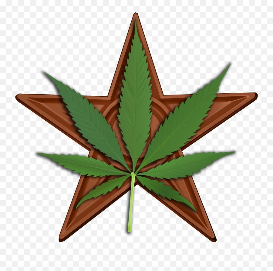 Cannabis Barnstar Hires - Star And Marijuana Leaf Emoji