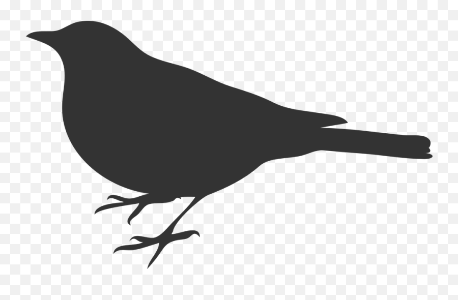 Free Raven Crow Vectors - Bird Silhouette Clip Art Emoji