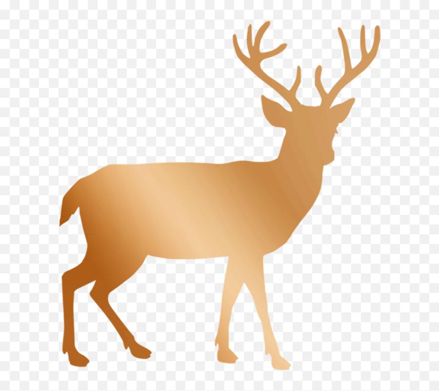 Free Christmas Rose Flower Images - Transparent Background Deer Clip Art Emoji,Deer Emoji Iphone
