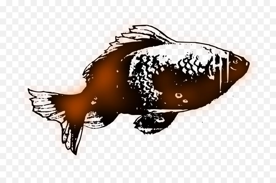 Goldfish Sketch Vector Clipart Image - Illustration Emoji