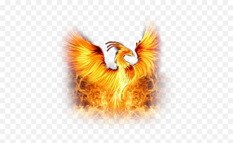 Scphoenix Phoenix Flame Fire Bird Legend Legendary Myth - Phoenix Bird Emoji
