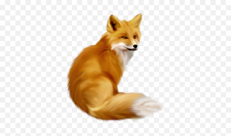 Fox Png And Vectors For Free Download - Dlpngcom Clipart Fox Emoji,Fox Emoticon