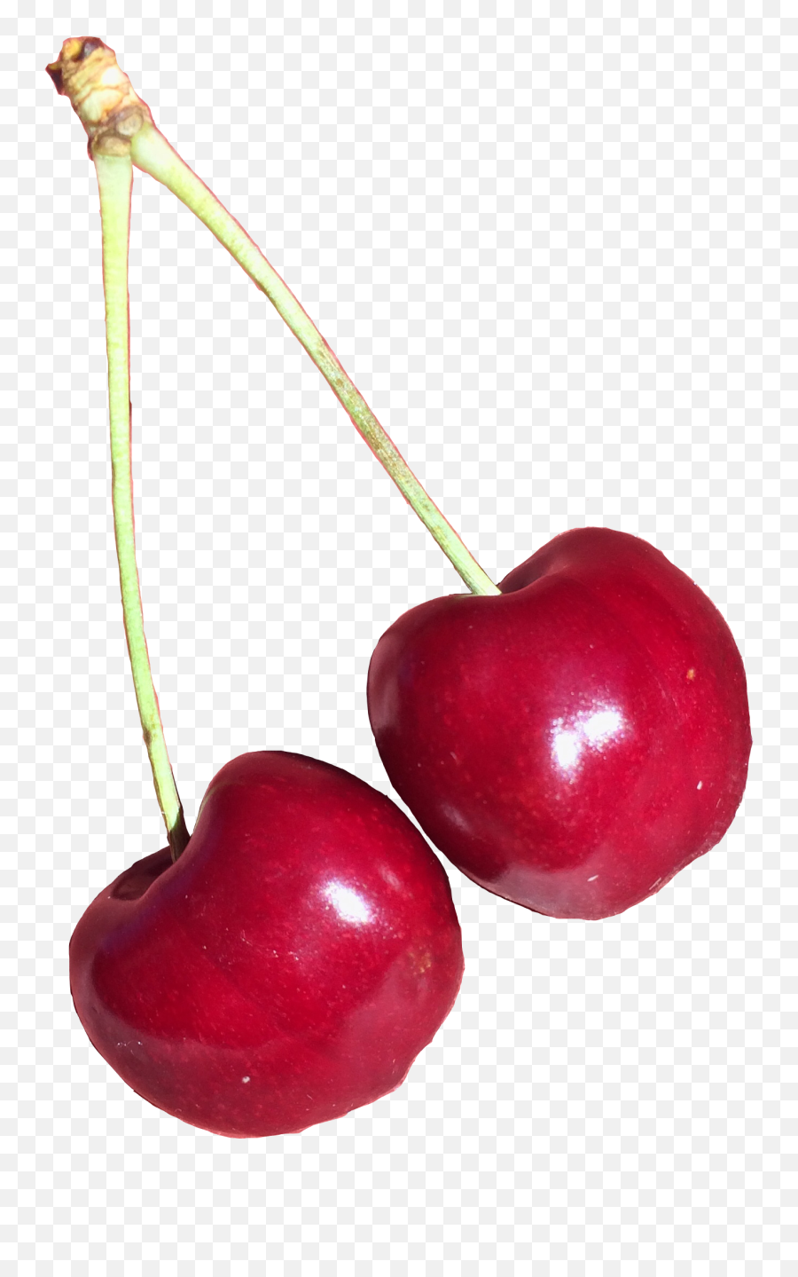 What does cherry emoji mean