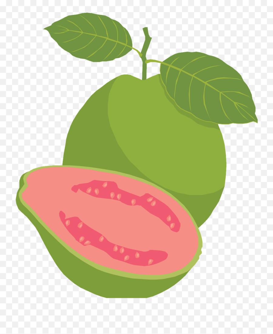 Guava Png - Guava Fruit Clipart Png Emoji,Deep Thought Emoji - free  transparent emoji - emojipng.com