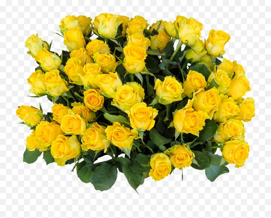 Emotions Roses Birthday Greeting Bouquet - Yellow Rose Bush Png Emoji