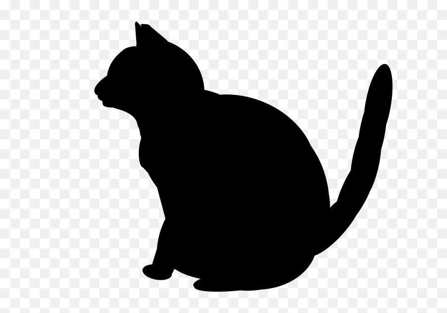 Cat Neko Japanese - Cat Emoji,Japanese Cat Emoticons