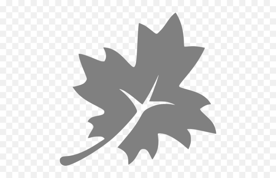 Gray Leaf 3 Icon - Icon Emoji,Snowflake Sun Leaf Leaf Emoji