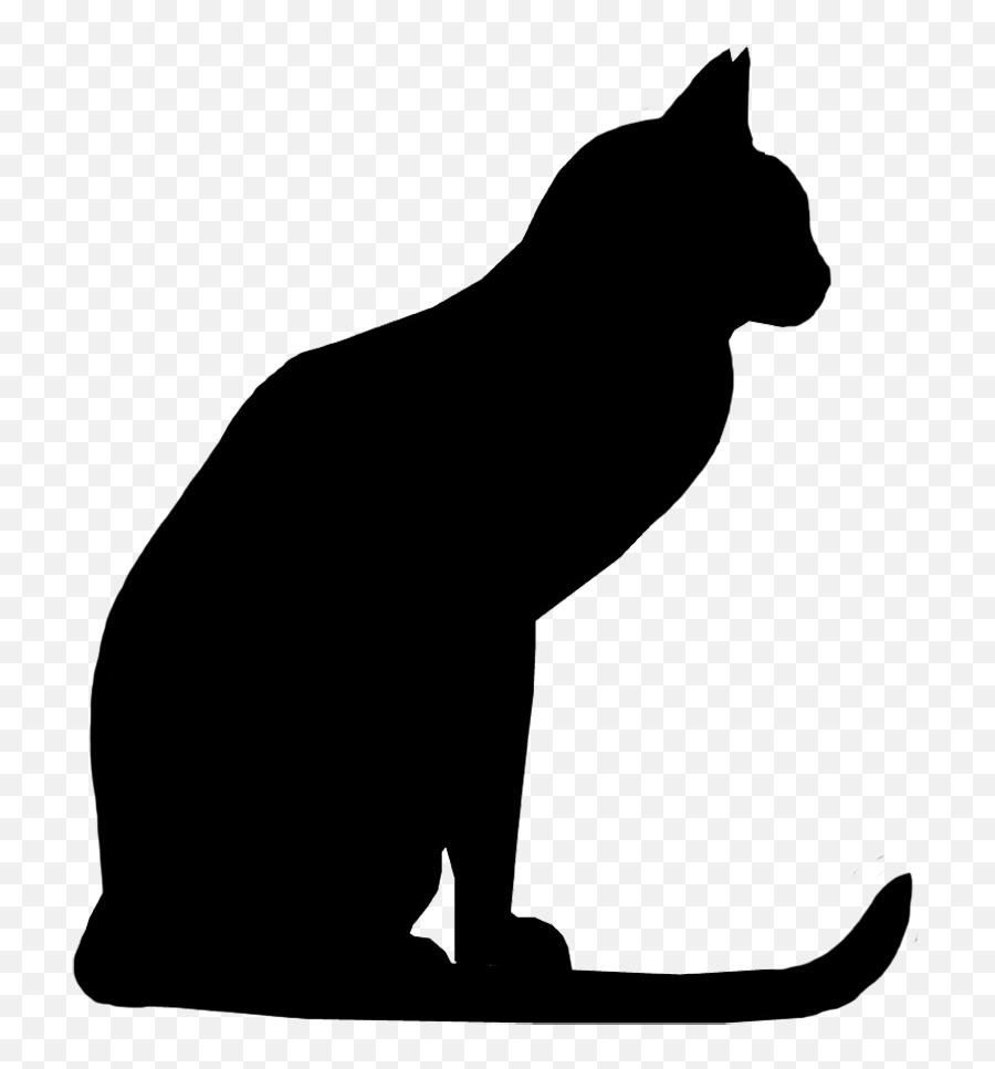 Black Cat Free Halloween Cat Vector Transparent Rr - Black Cat Png Clipart Emoji,Black Cat Emoji