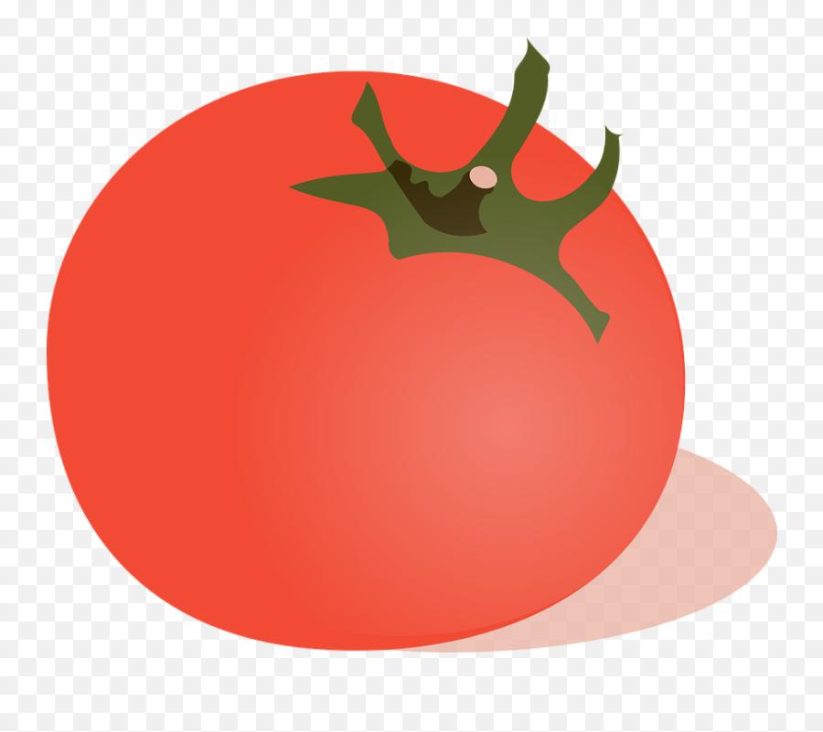 Free Tomato Food Vectors - Tomato Clip Art Emoji