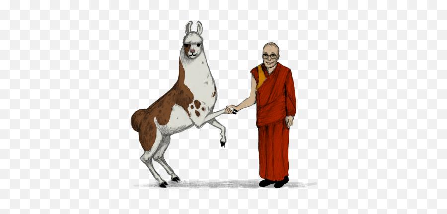 Llama Diplomat - Animated Llama Stickers By Shyama Golden Religious Ceremonial Clothing Emoji,Llama Emoji Iphone
