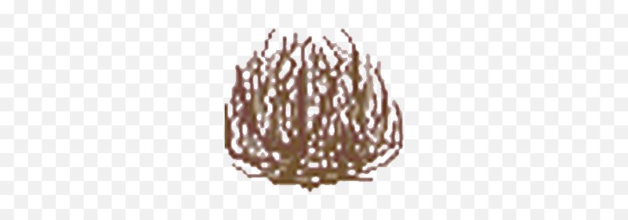 Top Tumbleweed Animated Gif Stickers - Tumbleweed Gif Transparent Background Emoji