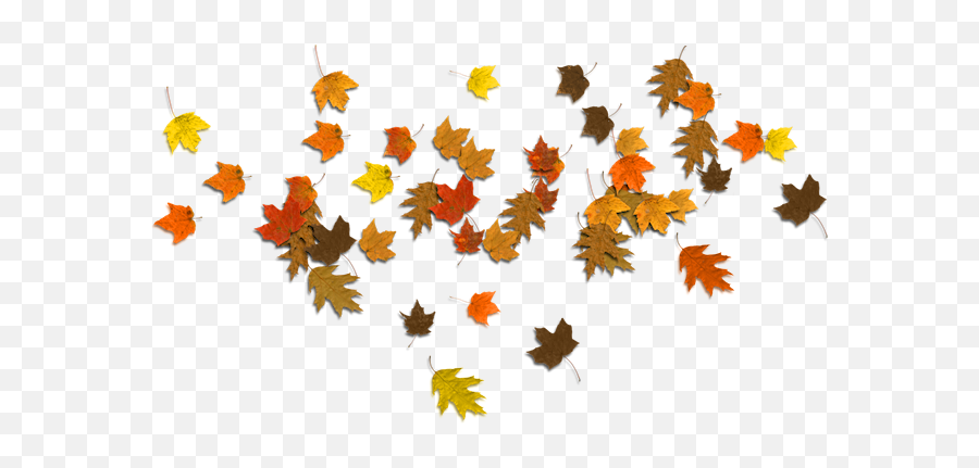 Fallen Leaf Png Clipart - Border Leaves Autumn Png Emoji,Autumn Leaf Emoji