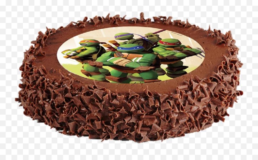 Welcome Into The Realm Of Lightbodyu0027s Birthday Cakes Blow - Cake Ninja Turtles Chocolate Emoji,Emoji Birthday Cakes