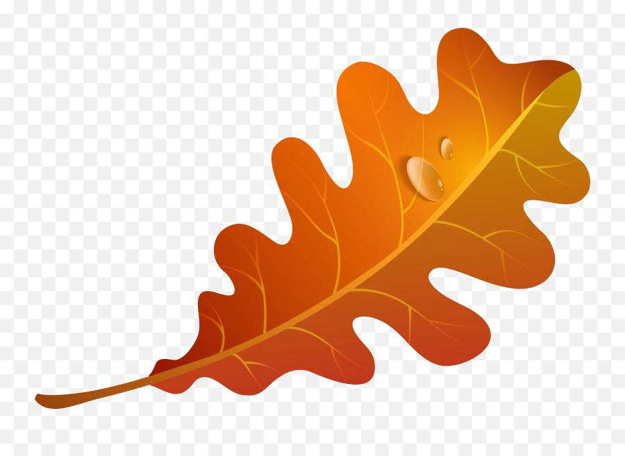 Orange Fall Leaves Clipart - Autumn Leaf Clipart Transparent Background Emoji,Autumn Leaf Emoji