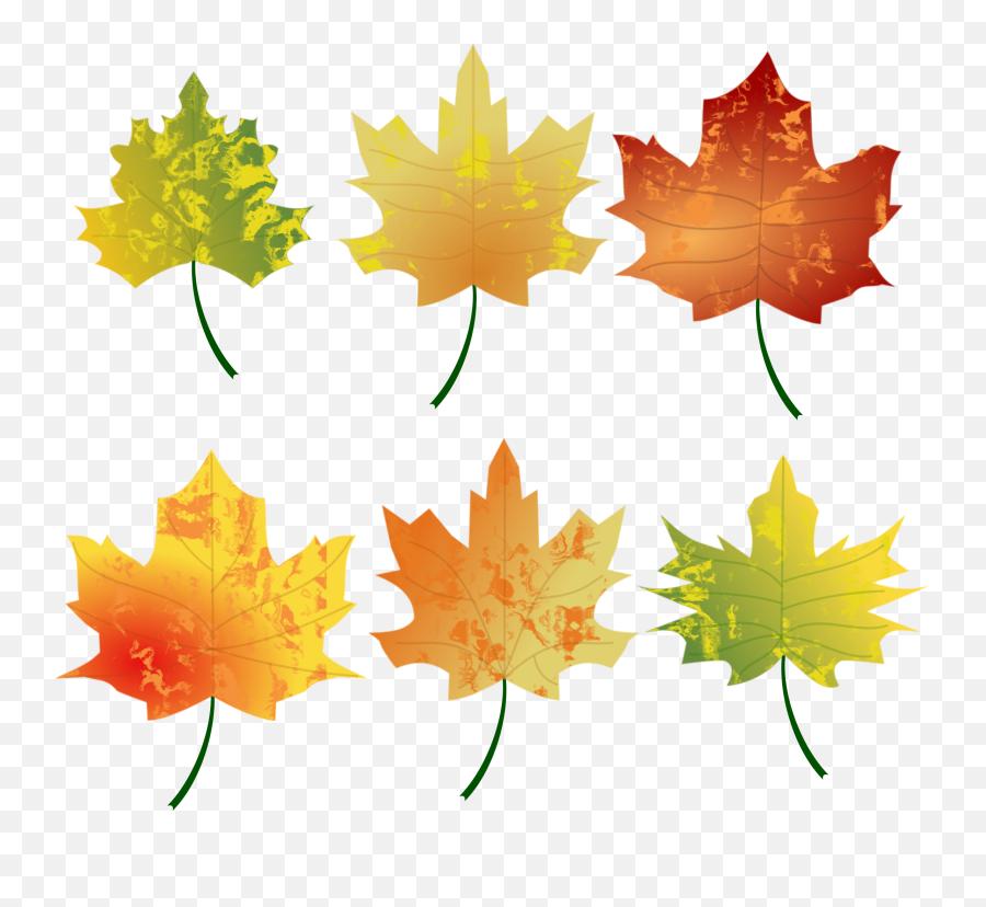 Free Photo Autumn Leaf - Autumn Brown Forest Free Autumn Leaves Clipart Emoji,Autumn Leaf Emoji
