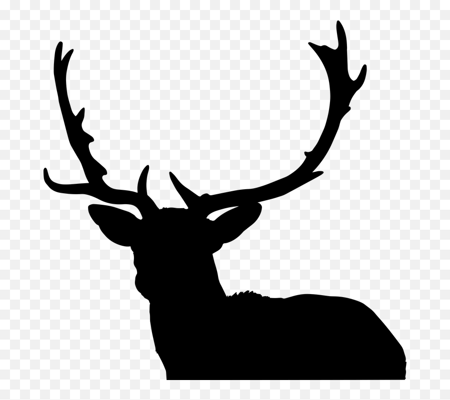 Deer Hunting Sport - Antlers Deer Emoji,Deer Hunting Emoji