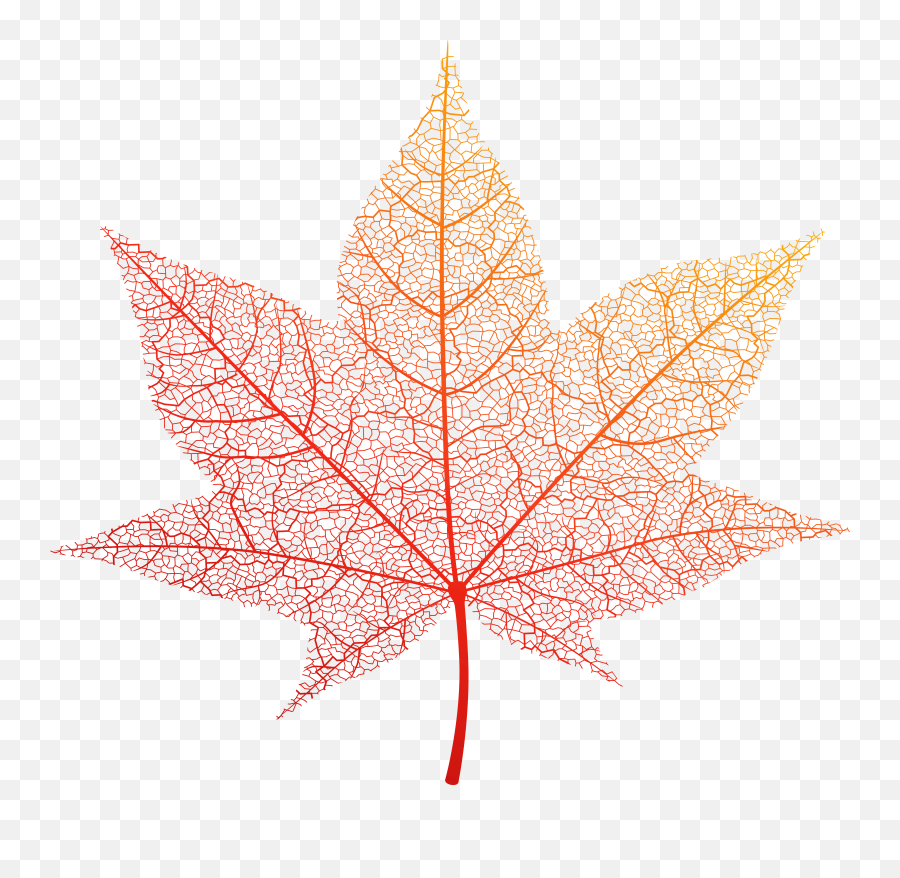 Free Photo Autumn Leaf - Autumn Brown Forest Free Portable Network Graphics Emoji,Autumn Leaf Emoji